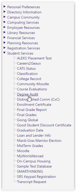 degree audit option under the student services tab at the left hand side panel.