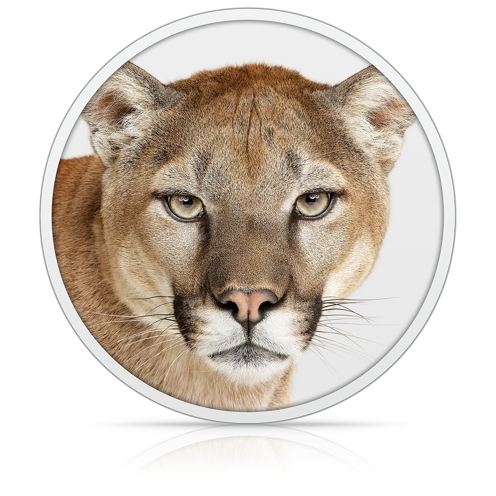 OS X Mountain Lion logo